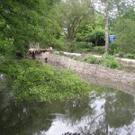 Riverbank restoration